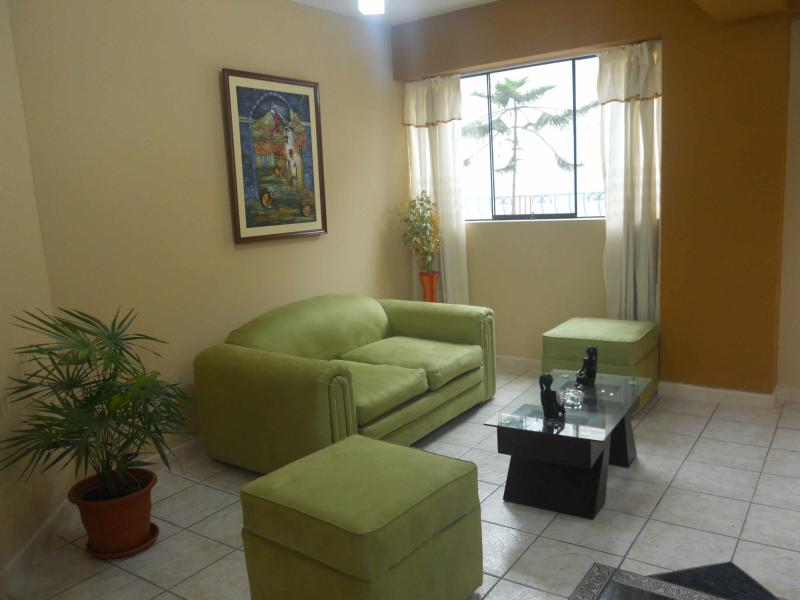 Living - Friendly apartment in Tara house - Lima - rentals