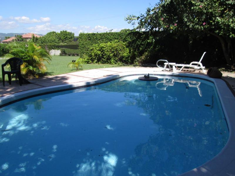 Pool area - Spacious, most central, private pool, secure - Kingston - rentals