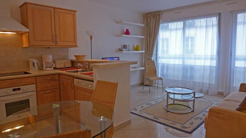 The livng room and the open kitchen - Studio   Paris Montparnasse district (164) - Paris - rentals