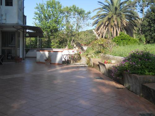 terrace - Big, Spacious 3 Bedroom Farmhouse in Elba - Portoferraio - rentals