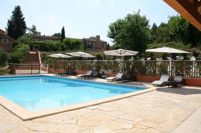 Our wonderfull pool - Gite de l'Anis, Pet-Friendly Studio with a Hot Tub, Balcony, and Pool - Brignoles - rentals