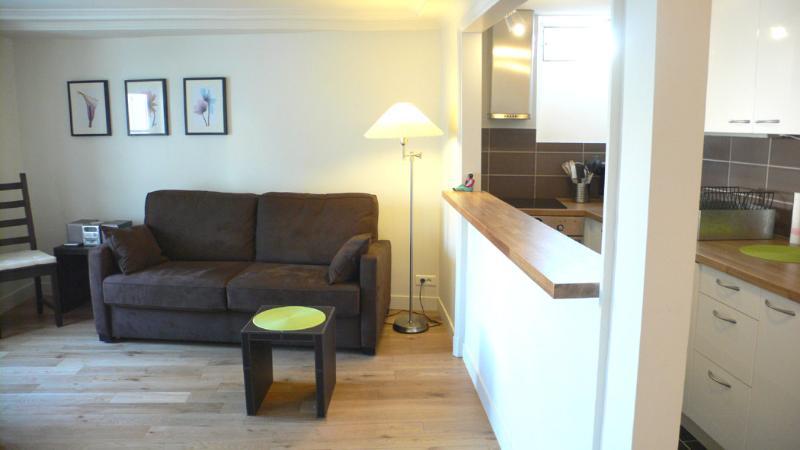 Two bedrooms   Paris Saint Germain des Pres district (343) - Image 1 - Paris - rentals