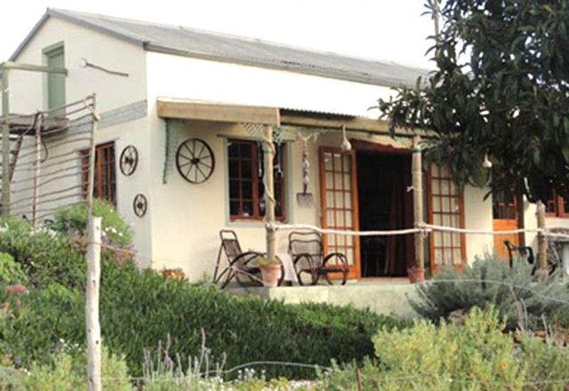 Driftwood Cottage: Quaint, cosy and secluded. More info on www.driftwoodcottage.co.za. - Driftwood Cottage - Napier - rentals