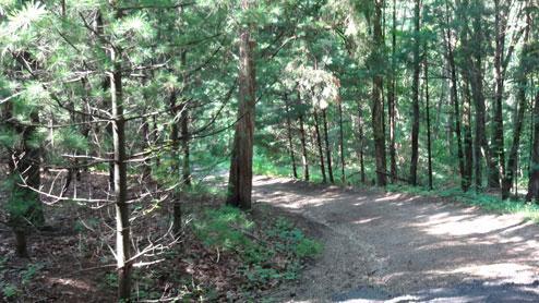 Private Drive - Wren Eagle Retreat - Chillicothe - rentals