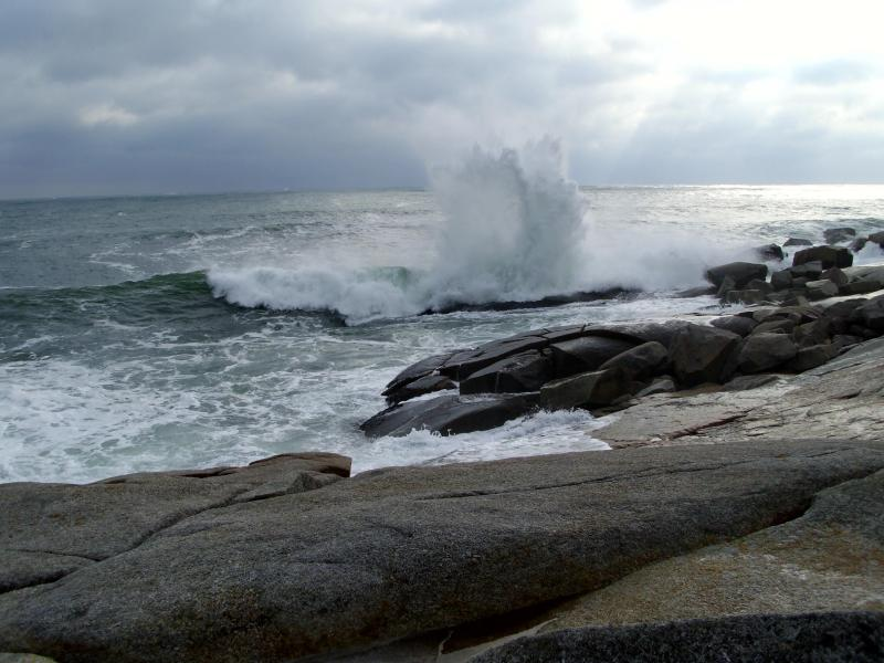 Sea and land near property - Executive Oceanside Cottage Near Halifax - Halifax - rentals