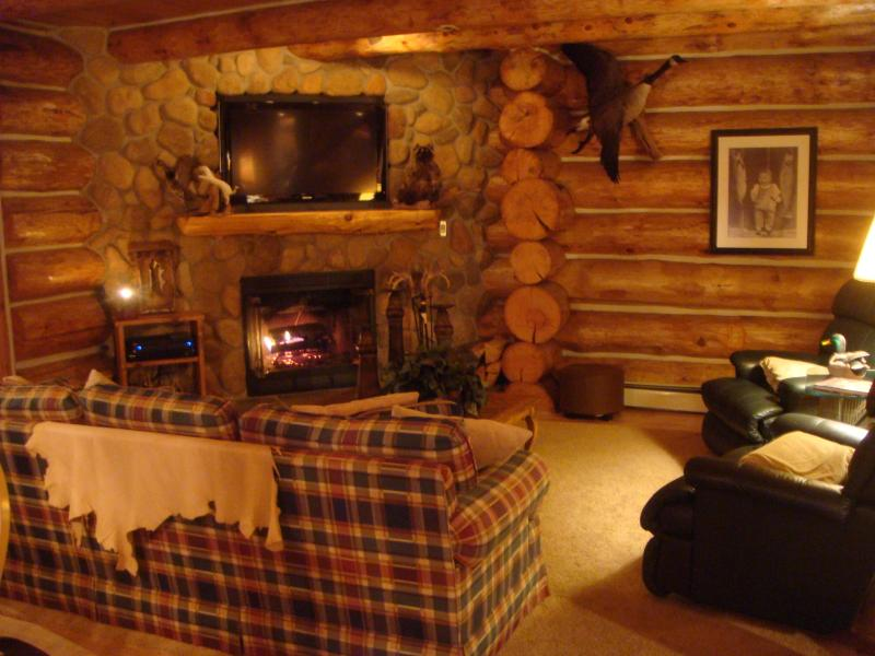 Custom Log Cabin in the Heart of the Manistee National Forest - Image 1 - Brethren - rentals