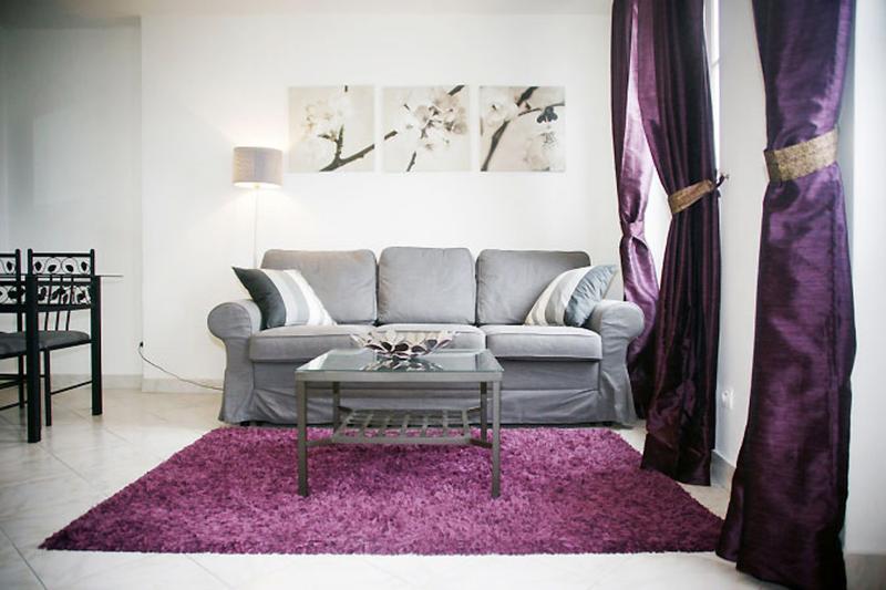 living room - Panoramic View Apartment at Montmartre - Paris - rentals
