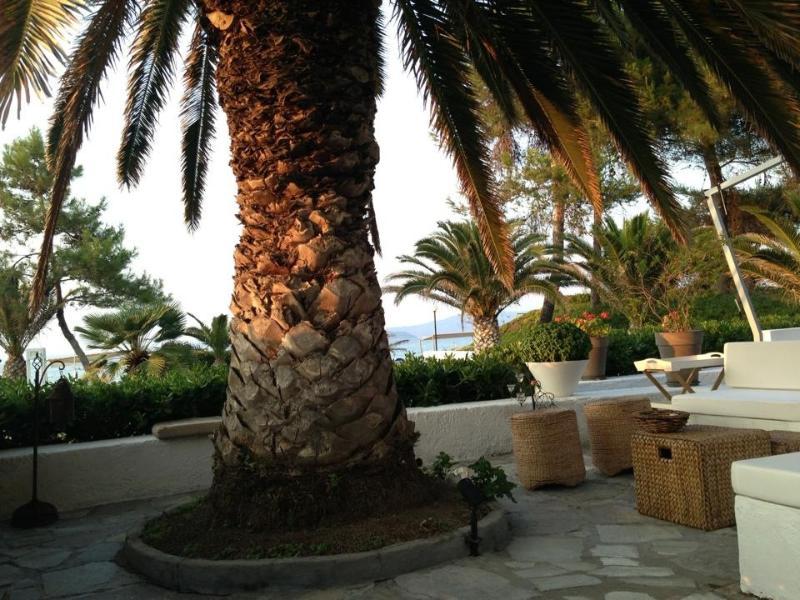 Courtyard - Sea front Villa  Chalkidiki - Halkidiki - rentals