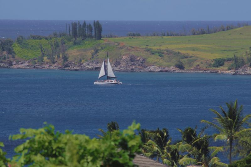 Sweeping Ocean views - Ocean View + Discount Golf = Fabulous Vacation! - Kapalua - rentals