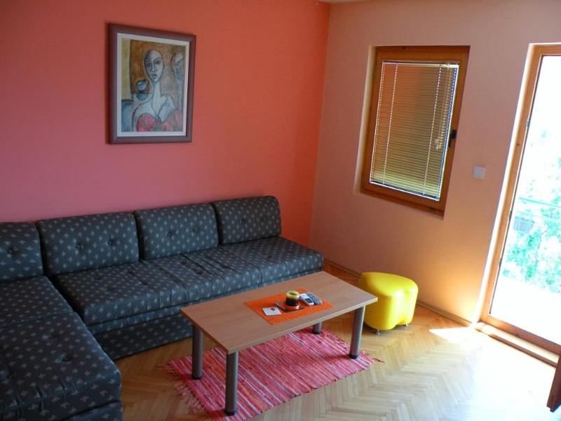 Orange apartment (Villa Ohrid) - Image 1 - Ohrid - rentals