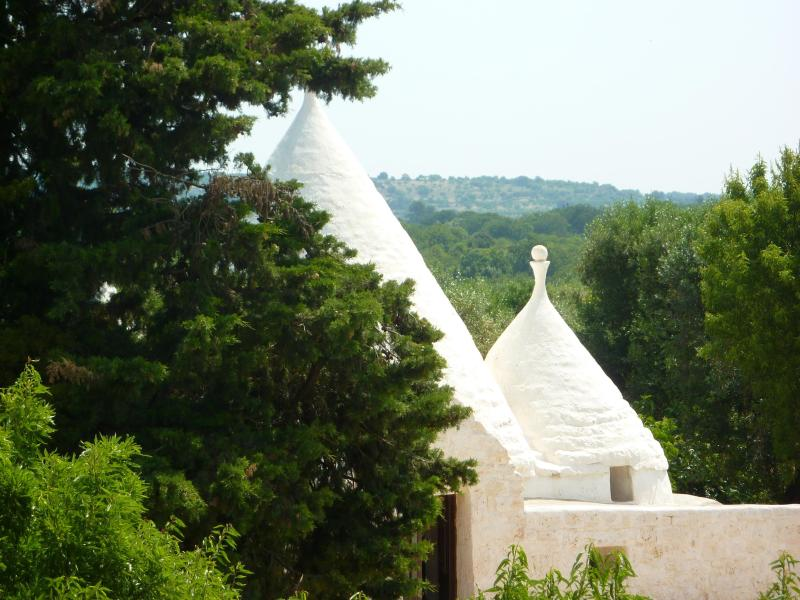 Over view - L'ANNAMARCO best place to stay in a very old and Nice trullo in  Ostuni Puglia Italy - Ostuni - rentals