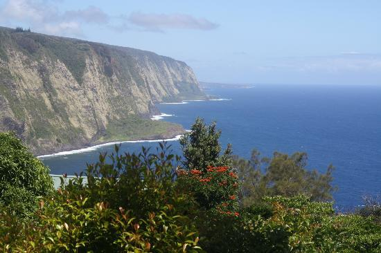 common view on property - Hale Kukui spectacular ocean cliff cottage with ex - Kukuihaele - rentals