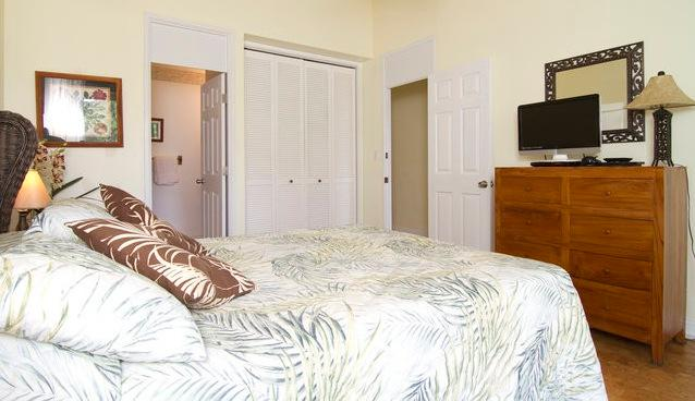Studio apt - Turtle Bay unit - Haleiwa - rentals