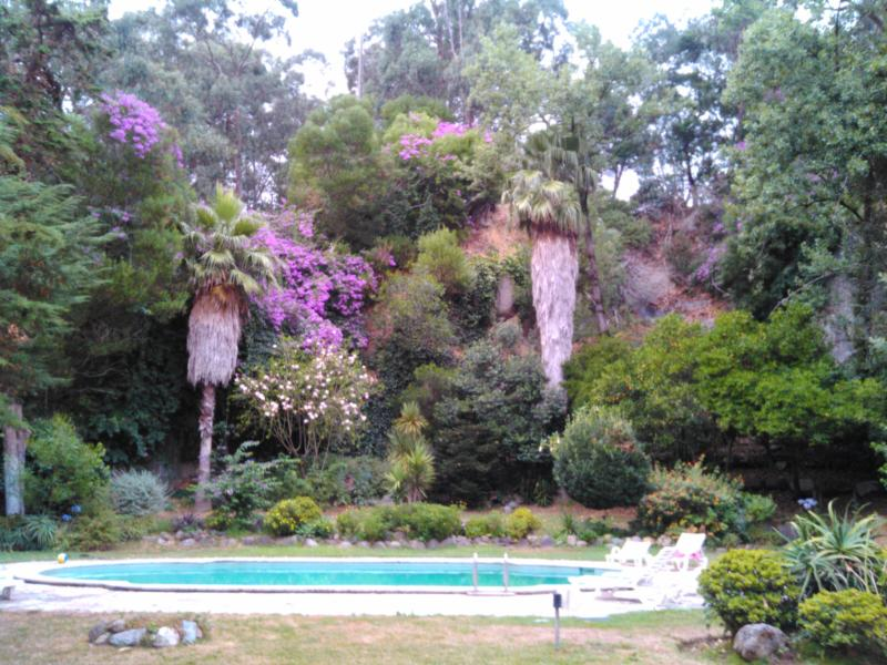 Beach and country side in Cascais - Image 1 - Cascais - rentals