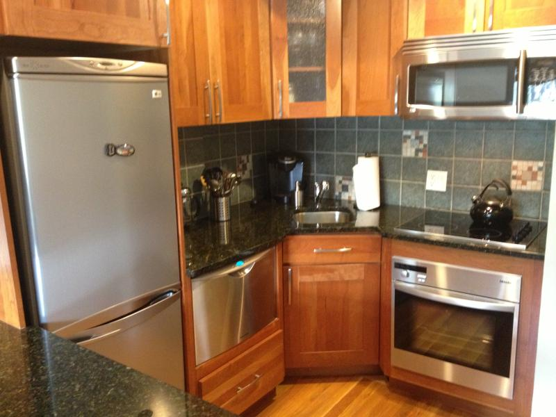 Full kitchen with stainless steel appliances - Great Location: Back Bay Apt. (1 BR) for 4 guests - Boston - rentals