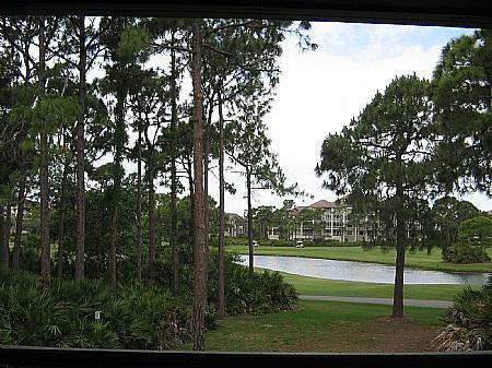 View - Wild Pines - Bonita Bay B-205 - Bonita Springs - rentals