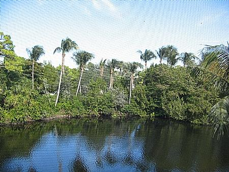 View - Bonita Bay-Harbor Landing NM201 - Bonita Springs - rentals