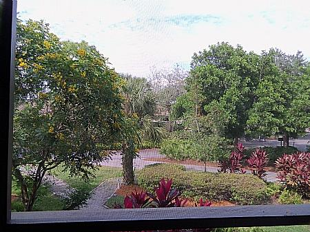 View - Wild Pines - A-204 - Bonita Springs - rentals