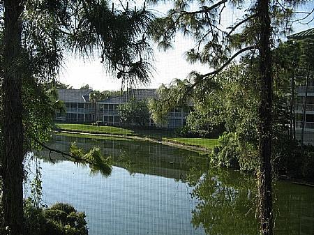 View - Wild Pines - Bonita Bay D-302 - Bonita Springs - rentals