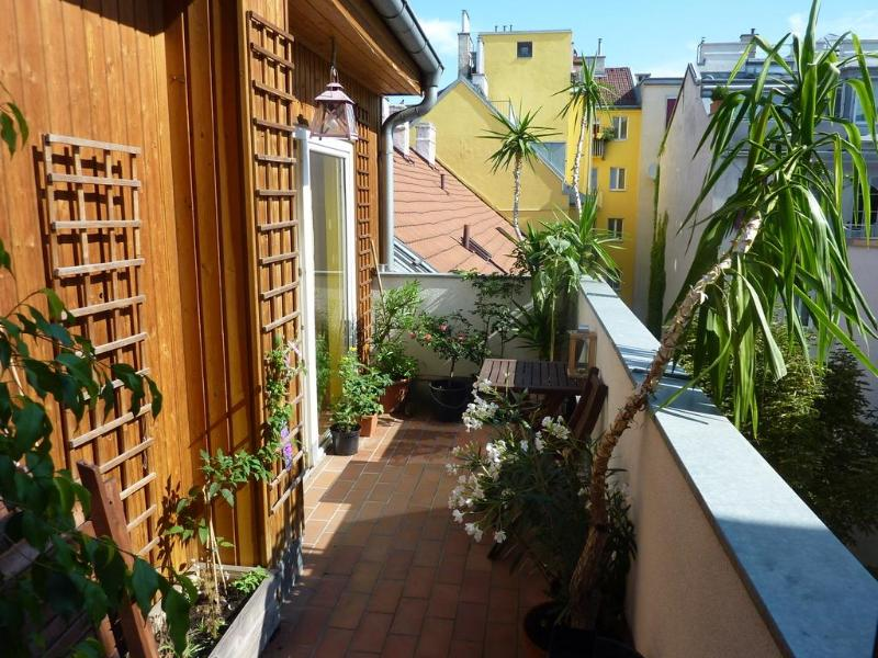 Terrace - Vienna - Bright & spacious rooftop apartment - Vienna - rentals