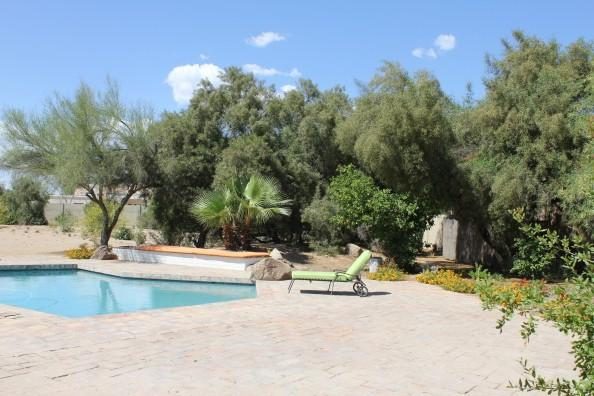 Pool/Backyard - Villa in  North Scottsdale - Scottsdale - rentals