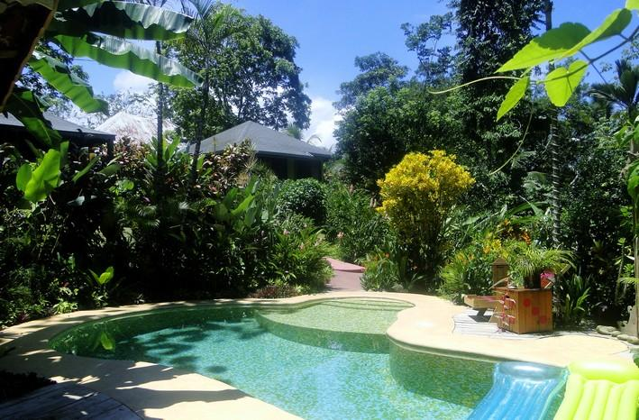 Swimming pool and bungalows - PHIDJIE LODGE - BUNGALOW PALMERA - Ojochal - rentals