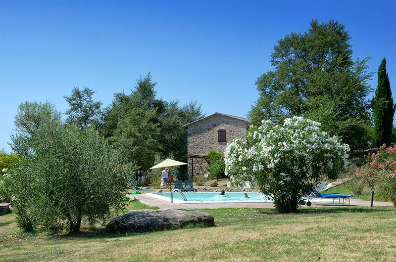 Pool and the garden - L'Ulivo, Family friendly holiday house with pool - San Venanzo - rentals