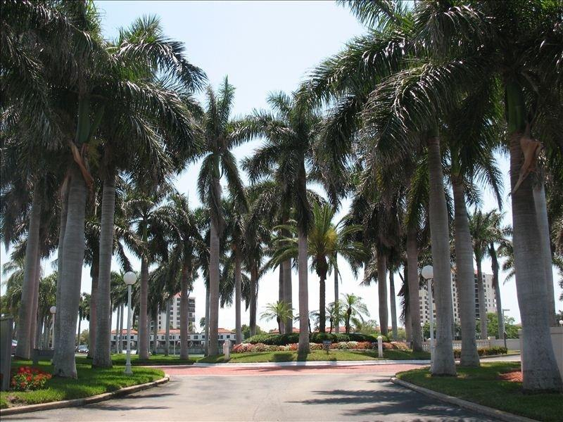 Bahia Del Mar Circle - Have Nothing To Do & All Day To Do It on Isla! - Saint Petersburg - rentals