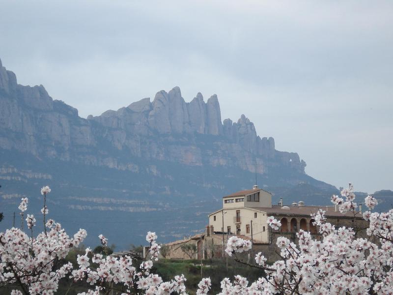Mas del Puig and the mountain of Montserrat - Mas del Puig-apartment for 2p at 1h from Barcelona - Castellbell i el Vilar - rentals