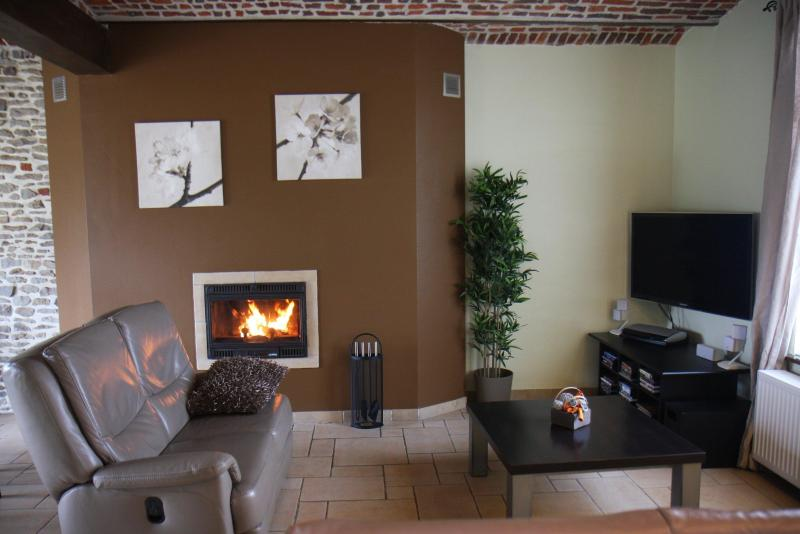 Becosy luxury house - Image 1 - Hainaut - rentals