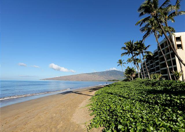 Sugar Beach Resort Penthouse Oceanfront Ocean View 2/2   Great Rates! - Image 1 - Kihei - rentals