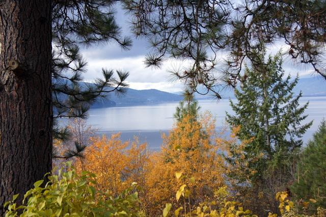 Lakeview Mountain Getaway view - The Place Over the Lake in the Mountains You Have Always Imagined - Hope - rentals