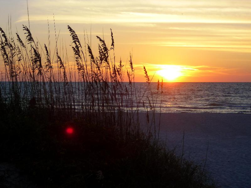 E12-Pass a Grille Isl. Steps to Beach w/Wifi&Bikes - Image 1 - Saint Pete Beach - rentals