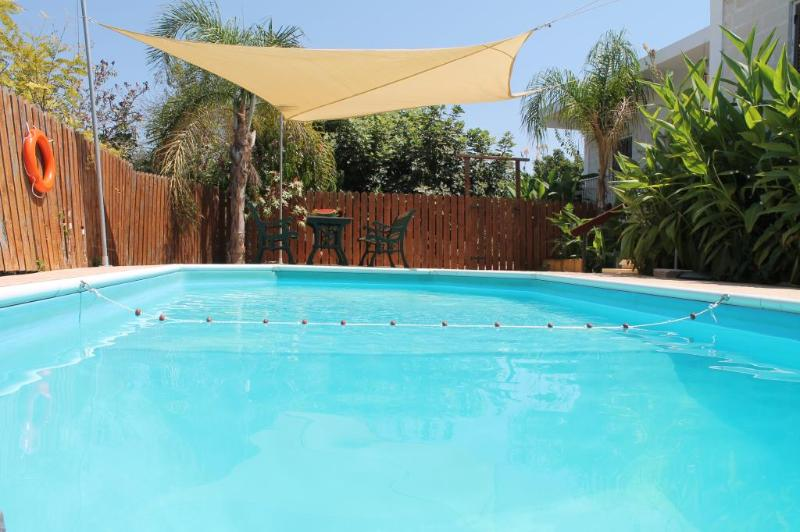Swimming Pool and back garden - Yiangos House - Paphos - rentals