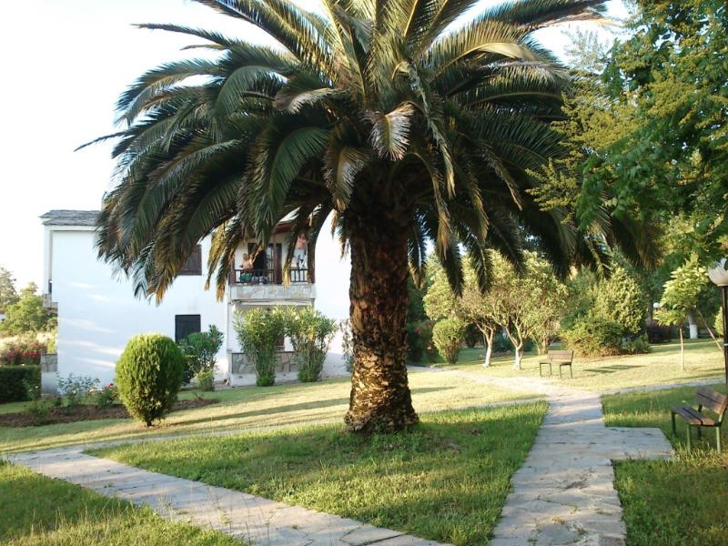 The garden - Small house in Halkidiki, Greece ! - Kalandra - rentals
