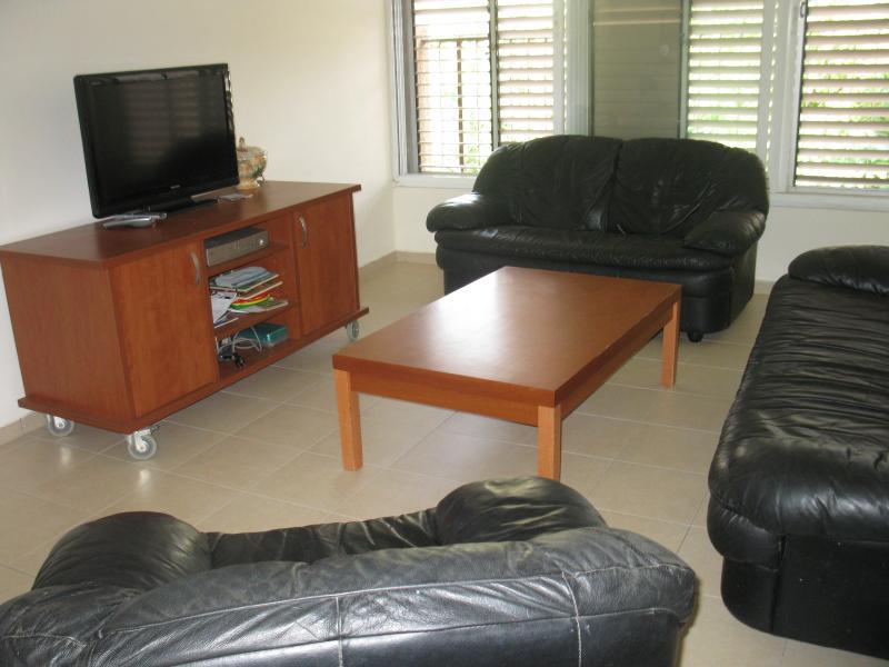 Nice apartment at Raanana - Image 1 - Herzlia - rentals