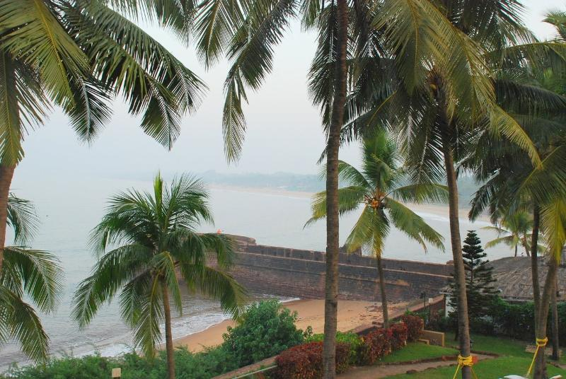 view - 3 bedroom villa  in Candolim - Candolim - rentals