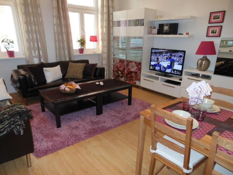 Spacious Living Room - Next to Palace Schönbrunn - Apt. 3 - Vienna - rentals