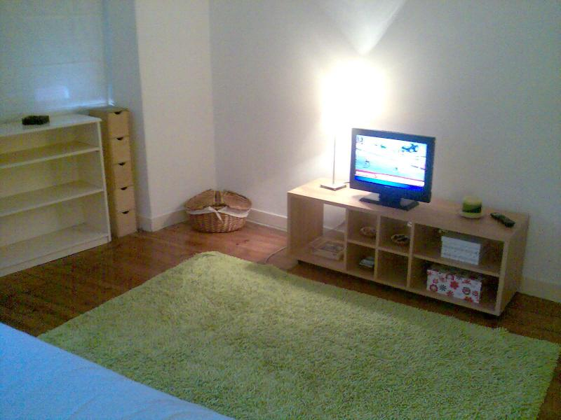 Very central apartment in Lisbon - Image 1 - Abrantes - rentals