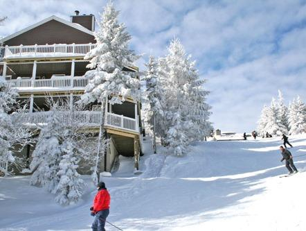 Stemwinder 9 - 4 Bedrooms, 3 Full Baths, Ski In/Ski Out - Stemwinder - 9 - Snowshoe - rentals