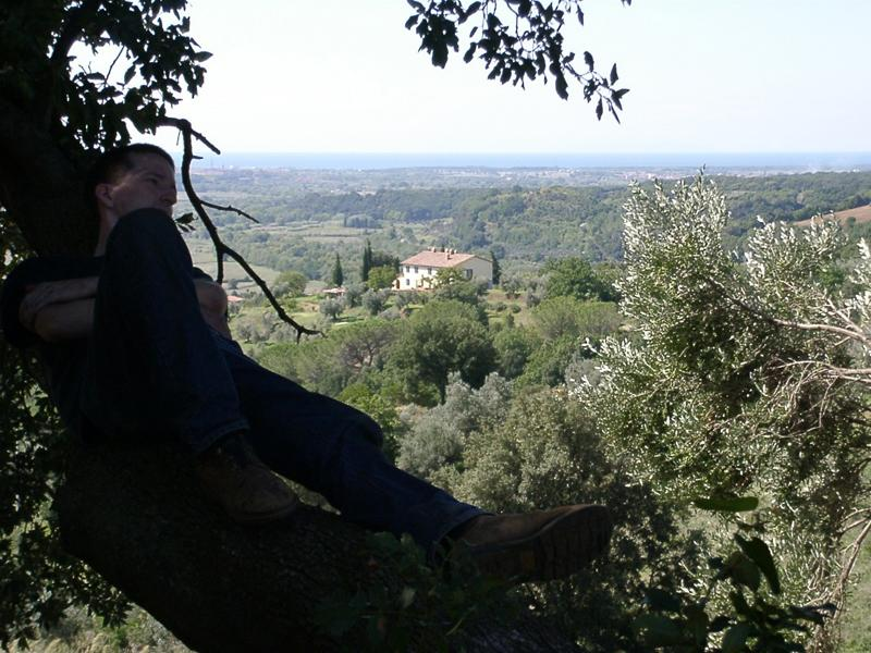 relax in the Tuscan hills! - Pet and Kid Friendly Tuscan Vacation Rental - Riparbella - rentals