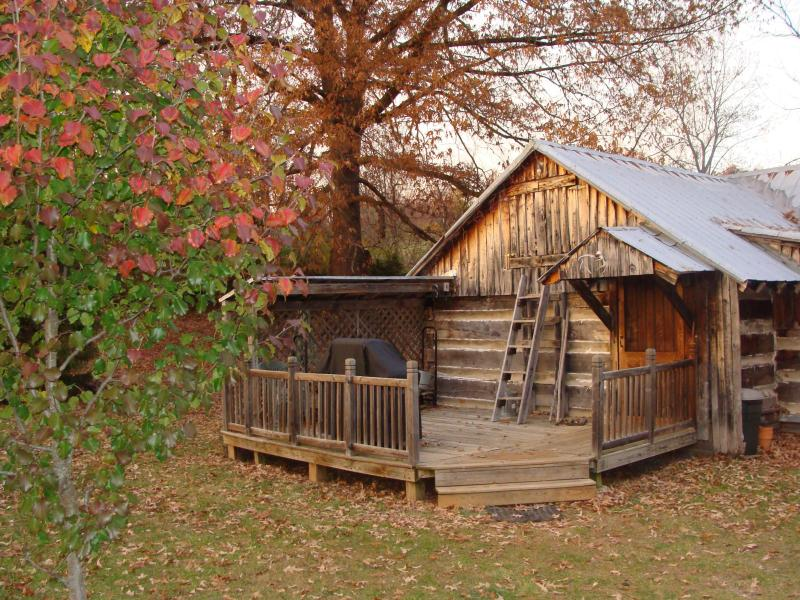 Homesteader's in the fall - Homestead Cabin - Lexington - rentals