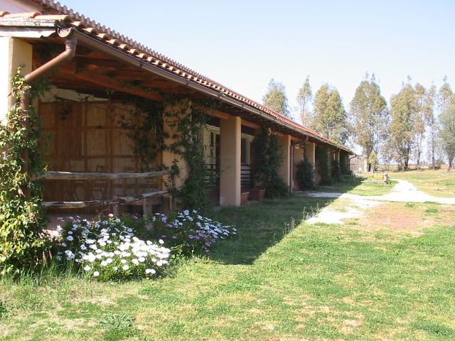 borgo s.maria di vulci - Image 1 - Montalto di Castro - rentals