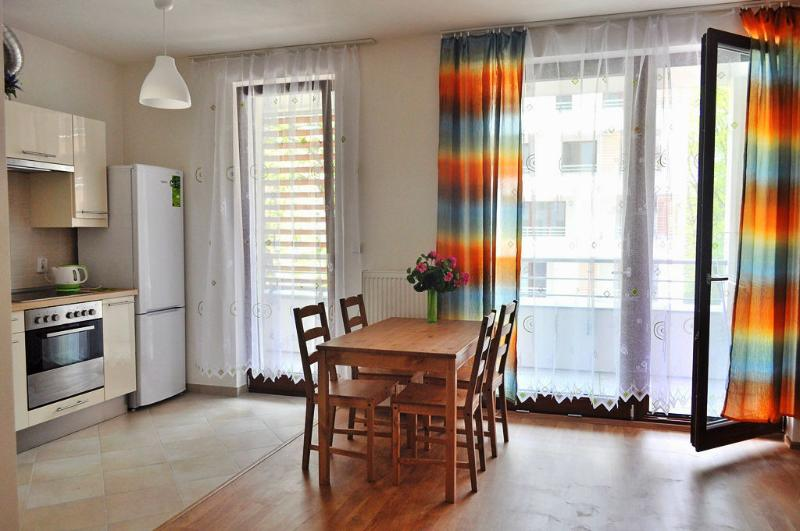 Bright spacious apartment - Image 1 - Prague - rentals