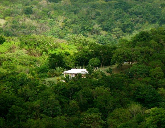 Tamarind Cottage (Private, not isolated) - Very private cottage WITH CAR on Carriacou - Carriacou - rentals