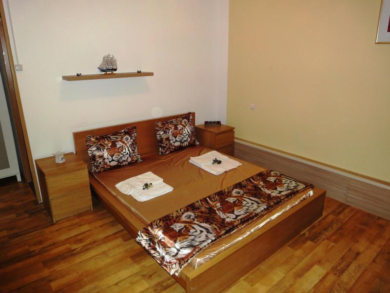 Studio apartment Premium location Bucharest - Image 1 - Bucharest - rentals