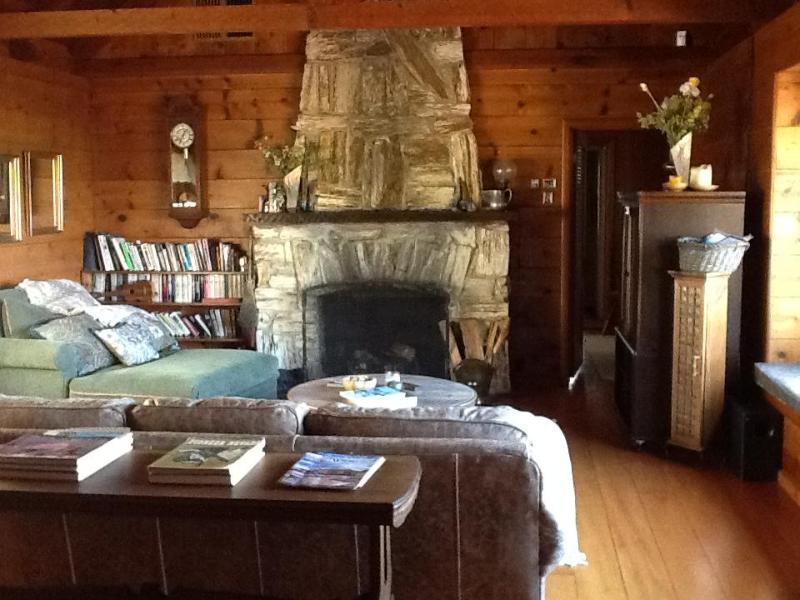 Living Room - Spacious comfort above Nevada City! - Nevada City - rentals