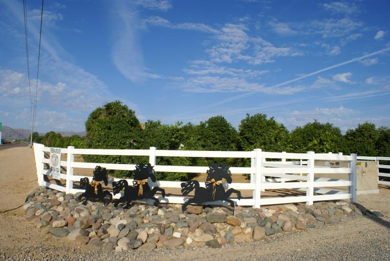 Entrance to Friesian Groves Ranch off Waddell - Luxury Guest Home on 15 Acre Citrus/Horse Ranch - Surprise - rentals