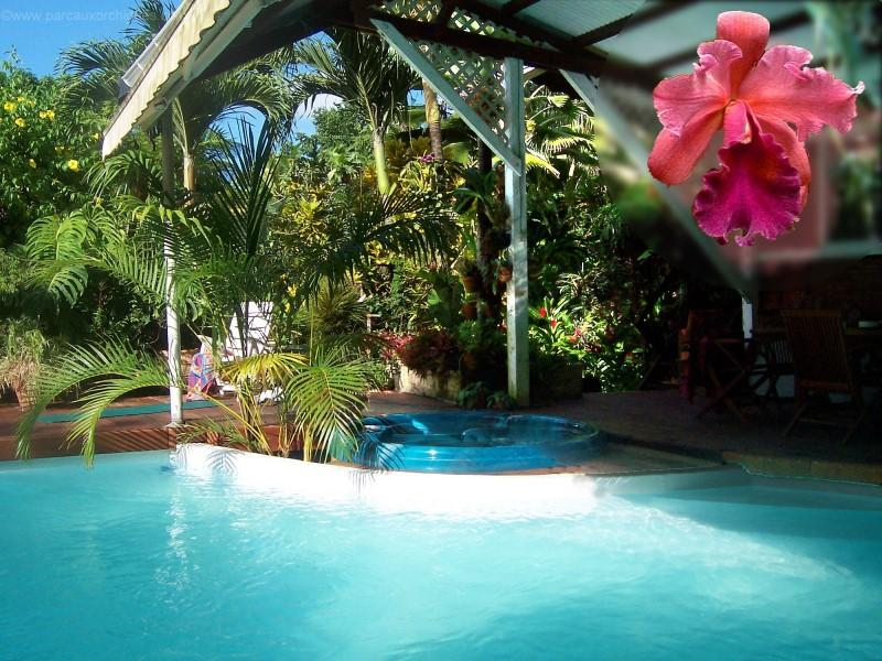 Swimming pool and jaccuzzi - Le Parc aux Orchidees, cottage Liane de Jade - Pointe-Noire - rentals