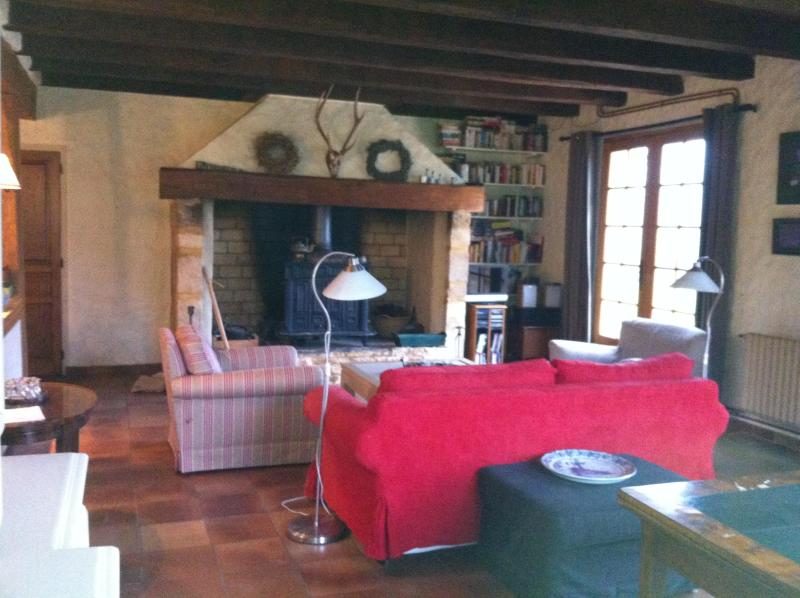 the beautiful open fire place - stylish hidden farmhouse on 25 acres with pool - Villefranche-du-Perigord - rentals